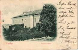 Postcard Lipica (Sežana Sesana Zizan) Lippiza Schloß Castello 1904 - Slowenien