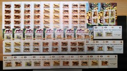 XX195 2011 !!! IMPERF, PERF BURUNDI FAUNA WILD ANIMALS LES CHATS SAUVAGES 20SET+18KB+16 LUX BL MNH - Raubkatzen