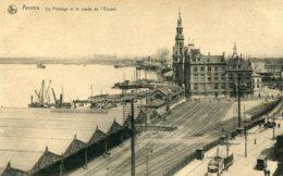 BELGIUM - Anvers - Le Pilotage Et Le Coude De L'Escaut - VG Trams, Railway Etc - Antwerpen