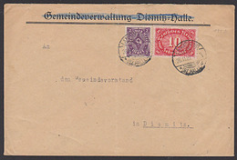 DR 10 M Ziffernaus Lanusberg (Bz Halle) Mi-Nr.: 195 In MiF Portogenau Auf Fernbrief Von Gemeinde Diemitz - Germany