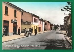 ANGELI DI ROSORA  VIAGGIATA - Ancona