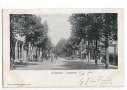 Apeldoorn - Dorpstraat - 1903 - Apeldoorn