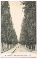 Murat - Allée De La Route D'Aurillac - LL - 50 - Animation - Lévy Et Neurdein - Vierge - Murat