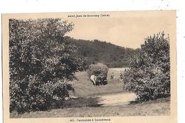 38  - CPA  De  St  JEAN  De  BOURNAY  -  L ' Automne  à  Bonnevaux  -  Travaux  Agricole  LES  FOINS  ( Animée ) - Saint-Jean-de-Bournay