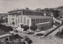 MUGGIA-TRIESTE-VIALE D'ANNUNZIO-CARTOLINA VIAGGIATA IL 28-7-1959 - Trieste
