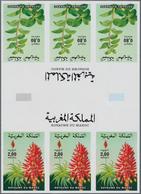 Thematik: Flora, Botanik / Flora, Botany, Bloom: 1984, Morocco. Progressive Proof (8 Phases) For The - Pflanzen Und Botanik
