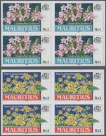 "Thematik: Flora, Botanik / Flora, Botany, Bloom: 1999, Bahamas. Complete Set ""Endemic Plants"" (4 Val - Pflanzen Und Botanik"