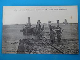 17 ) La Tremblade - Marennes - N° 3382 - Bac Sur La Seudre Asurant Le Service  - Année  : EDIT : Bergevin - La Tremblade