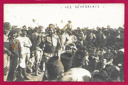 Carte Photo Militaria - Maroc - Casablanca - Alpins Et Sénégalais - Regimente