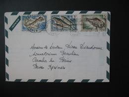 Lettre Publicitaire Héxacycline Diamant Sirop Antibiotique Congo 1963  Pour La France Cachet Brazzaville TP Poissons - Oblitérés