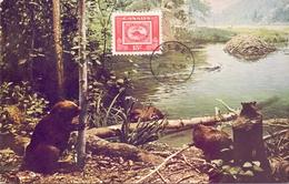 CANADA   POST CARD MAXIMUM QUEBEQ 1954  (MAGG20196) - Maximumkaarten