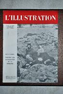 L'illustration N° 5213 - 6 Fevrier 1943 - Les Opérations Sur Le Front De L'est ... - Journaux - Quotidiens