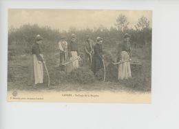 Landes Métier : Taillage De La Bruyère  - C'était La France N°464 Cp Vierge - France