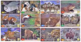 Lot / SERIE COMPLETE - 12 Mois Année 2003 - ANIMAL - 12 Cartes Japon Japan Cards COMPLETE ANIMALS YEAR SET TIERE - Tarjetas Telefónicas