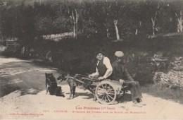 31) LUCHON - LES PYRENEES (1er SERIE) ATTELAGE DE CHIENS SUR LA ROUTE DE MONTAUBAN - EDITEUR LABOUCHE TOULOUSE - 2 SCANS - Luchon