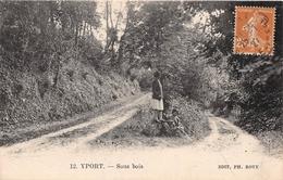 YPORT - Sous Bois - Yport