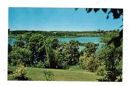 NEEPAWA, Manitoba, Canada, Park Lake. Old Chrome Postcard - Other