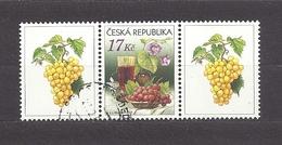 Czech Republic 2008 ⊙ Mi 544 Zf Sc 3373 Still Life With Grape And Wine. Tschechische Republik. C4 - Tchéquie