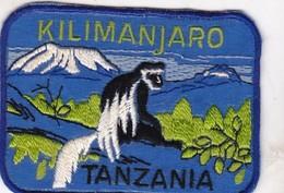 CHASSE / RESERVE / SINGE / TRES BEL ECUSSON / TANZANIE / KILIMANDJARO - Ecussons Tissu