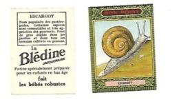 BON POINT ESCARGOT LA BLEDINE JACQUEMAIRE - Buvards, Protège-cahiers Illustrés