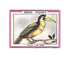 BON POINT BLEDINE DIASE CEREALE LAIT ALMA  .... TOUCAN A BEC JAUNE  .... - Buvards, Protège-cahiers Illustrés