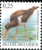 Belgium 2002 MiNr. 3140 Belgien Birds Buzin Eurasian Oystercatcher 1v  MNH**  0,60 € - Ongebruikt