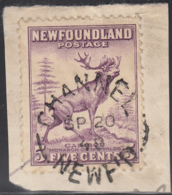 Newfoundland 1941-44 Used Sc #257 Channel, Newf'd SP 20 48 Split Circle - 1908-1947