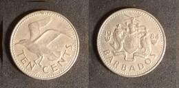 Barbados - 10 Cents 1984 Used (ba004) - Barbades