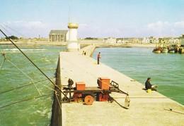 44 La Turballe Le Phare Et Le Port (2 Scans) - La Turballe