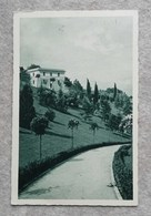 Cartolina Postale Città Del Vaticano - Rose In Fiore Su Viale Da Passeggio, Per Siena 1937 - Parks & Gardens