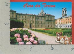 CARTOLINA VG ITALIA - Ciao Da TORINO - Giardini Del Palazzo Reale - 10 X 15 - 2002 - Palazzo Reale