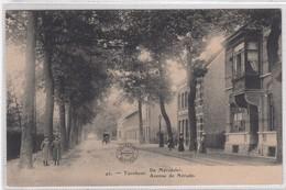 Turnhout. De Merodelei. - Turnhout