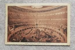 Cartolina Illustrata Roma - Interno Del Colosseo - Caccia Alle Fiere, Per Anvers (B) 1925 - Colisée