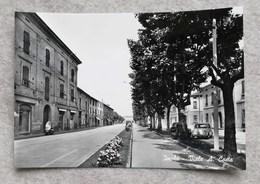 Cartolina Illustrata Imola - Viale Andrea Costa - Imola