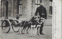 En BELGIQUE UN ATTELAGE DE MITRAILLEUSE. -  In Belgium  Quickfiring By Dogs.  -  1902   Naar   Tours - Matériel