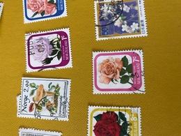 NUOVA ZELANDA LE ROSE 1 VALORE - Briefmarken