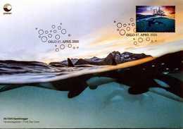 2020 Norway, Marine Mammals, Whales, Orca, FDC - Baleines