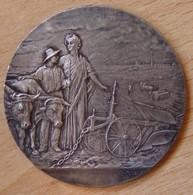 Médaille ORNANS (25-Doubs) Comice Agricole D'Ornans) - Firma's