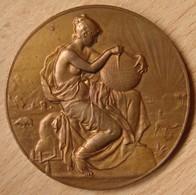 Médaille Congrès National Des Sciences Géographiques . Paris 1889 - Firma's