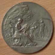 Médaille Société Horticulture De Valencienne Maillechort Par Robineau Et Fils Paris - Firma's