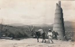 """RP: En """"Los Remedios"""" , Mexico , 00-10s ; Donkey - Mexico"""