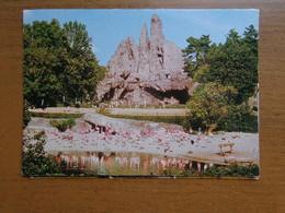 Zoo, Dierenpark / Carl Hagenbeck's Tierpark, Panorama (flamingo's, Struisvogels, Zebra) -> Unwritten - Birds