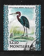 MONSERRAT 1970 LITTLE BLUE HERON - Montserrat
