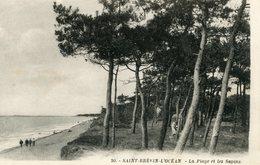 SAINT BREVIN L'OCEAN LA PLAGE ET LES SAPINS - Saint-Brevin-l'Océan