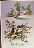 Cpm, Illustration, Bonne Année, 2 Oiseaux (rouge Gorge) , Paysage Enneigé, Village, Eglise, éd MD 2004. 4/4 - Nieuwjaar