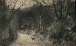 92  ROBINSON  La Vallée Aux Loups - Francia