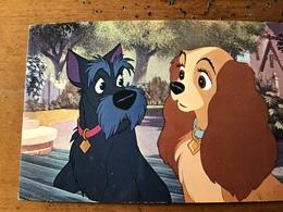 Disney Belle Et Le Clochard - Disneyworld