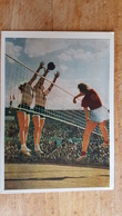 Old USSR Postcard - VOLLEYBALL- Sport Serie - 19556- Rare Edition! - Volleyball