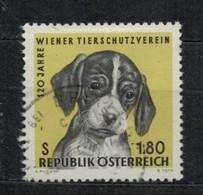 1966  120th Anniversary Of The Vienna Animal Protection Associatio - Yt 1043 - Unificato 1043 - Mi 1208 - 1945-.... 2ème République