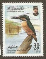 Brunei  1998  SG 603  Kingfisher  Fine Used - Brunei (1984-...)